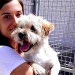 Centro Atención Animal_10