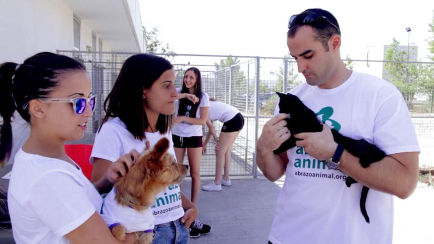 Centro Atención Animal_8