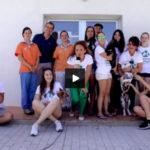 caratula-video-grupo