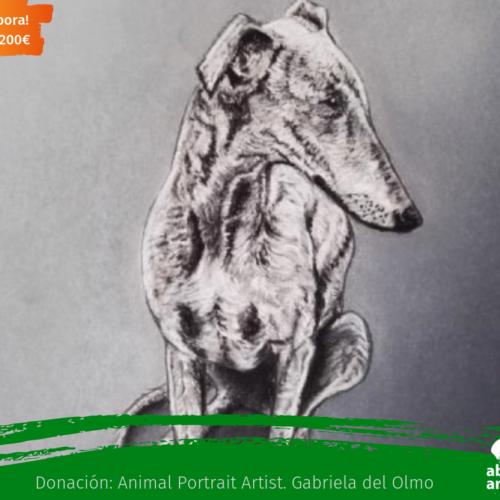 ¡COLABORA! Obra de Arte donada a venta por el valor de 200€