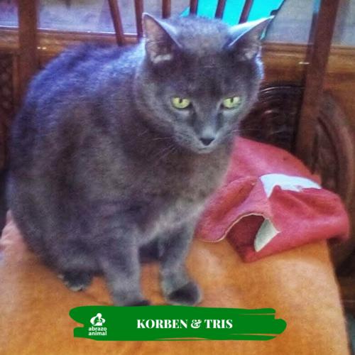 Korben & Tris