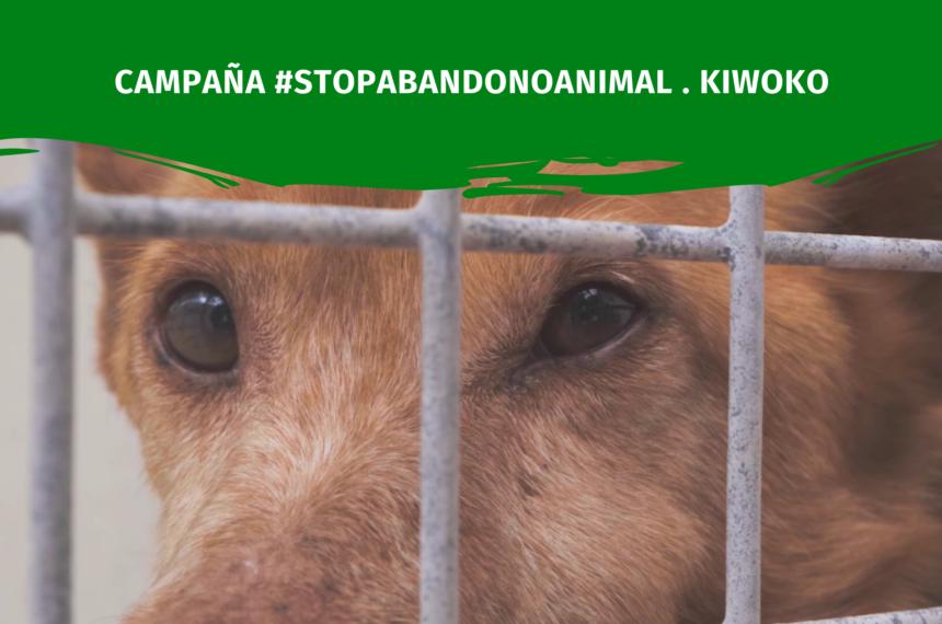 Stop Abandono Animal . Kiwoko